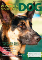 The Virginia Maryland Dog sm