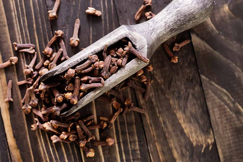Are cloves safe for dogs and cats