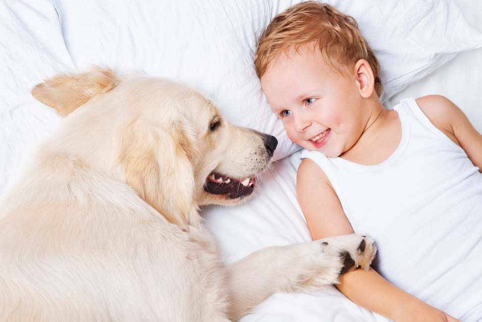 Picture of a boy and his Golden Retriever