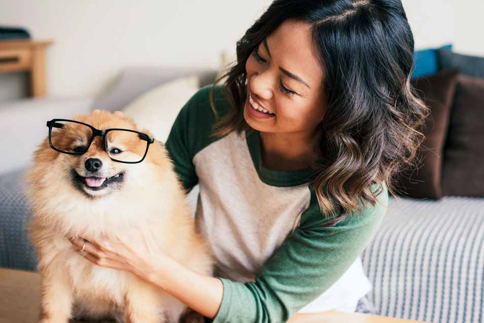 Picture of a Pomeranian and a young woman