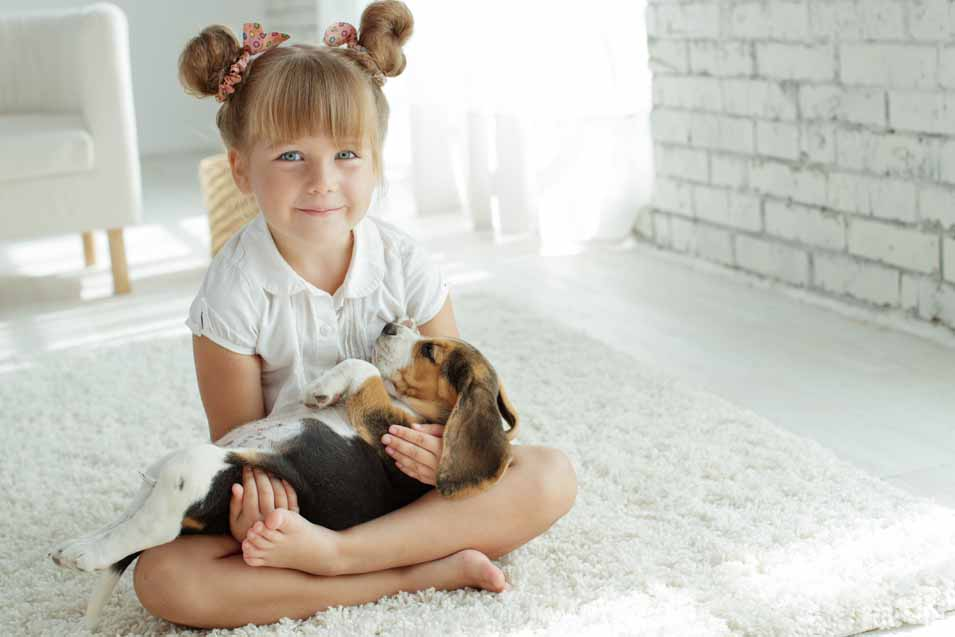 Picture of a girl holding a Beagle