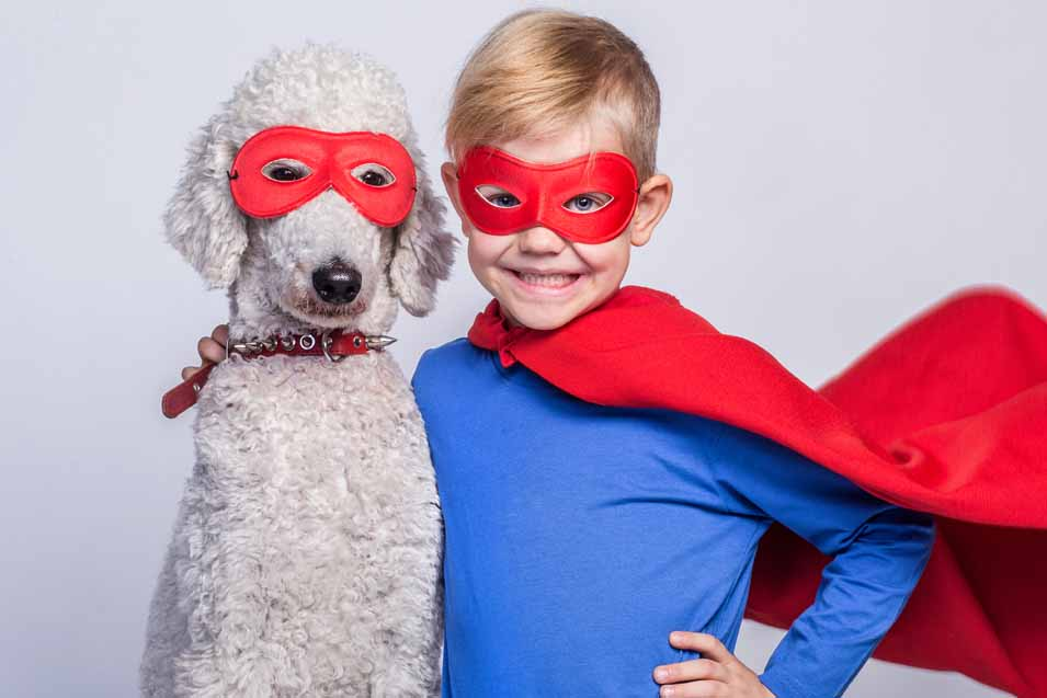 Picture of a Poodle and a boy dressed up