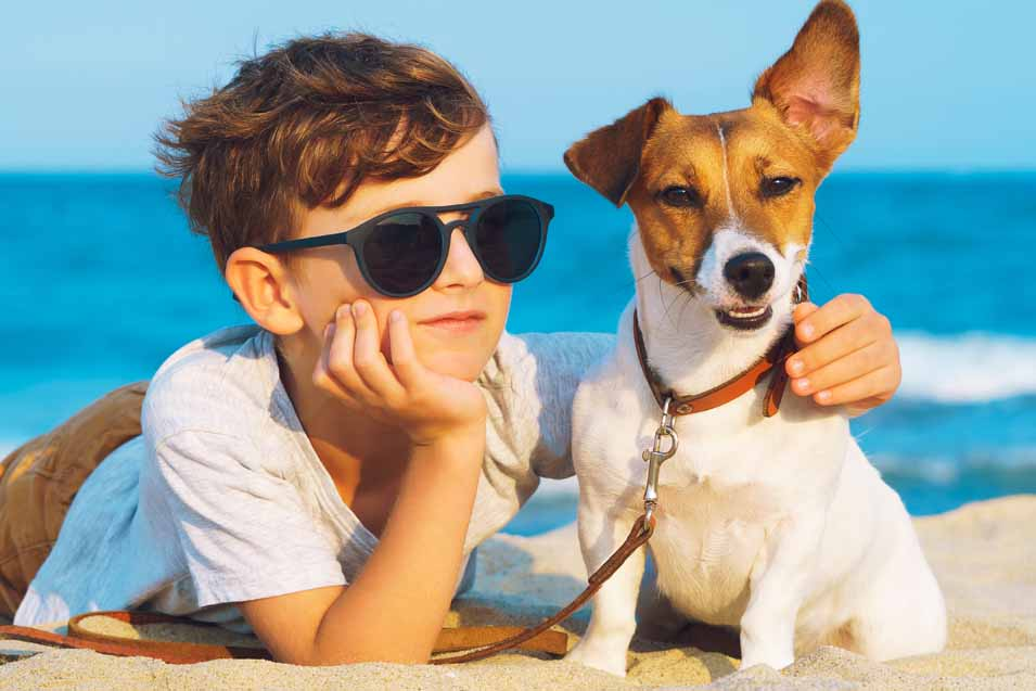 Picture of a boy and his Russell Terrier at the beach