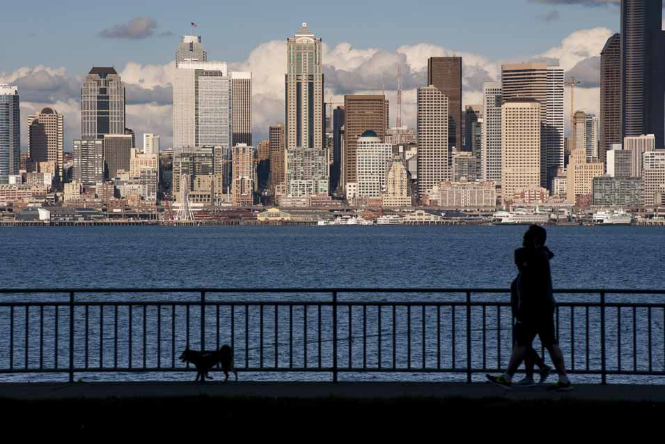 Picture of a couple walking dog in Seattle