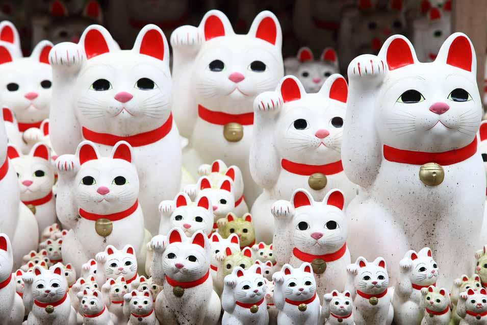 Picture of a group of Maneki Neko Cats