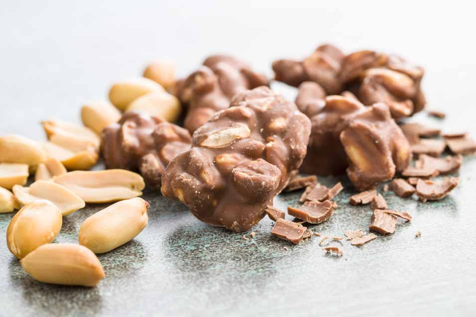 Can cats have chocolate covered peanuts